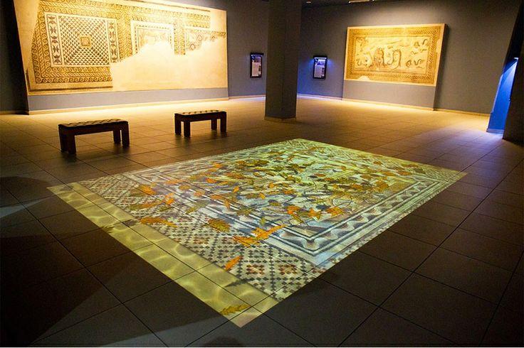 Zeugma Mosaics Museum